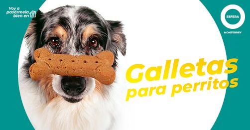 Cookies para tus perritos